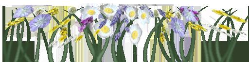 Auto Grass Flowers