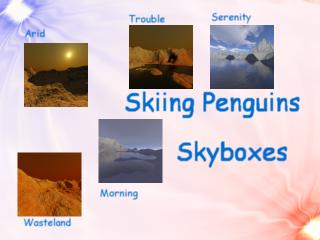Sky Box Compilation